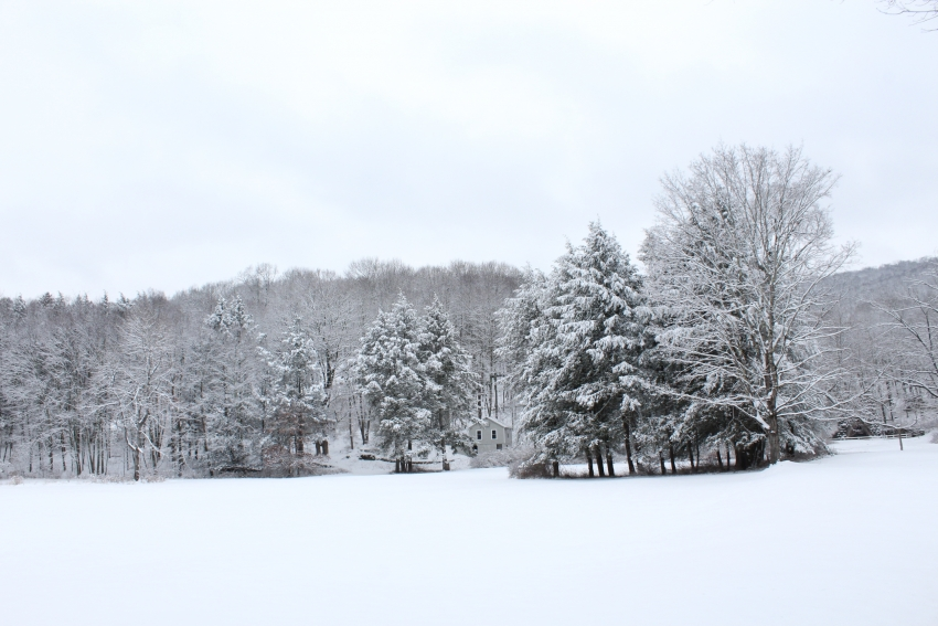 Beautiful Snowy Landscape of Dover HQ Properties